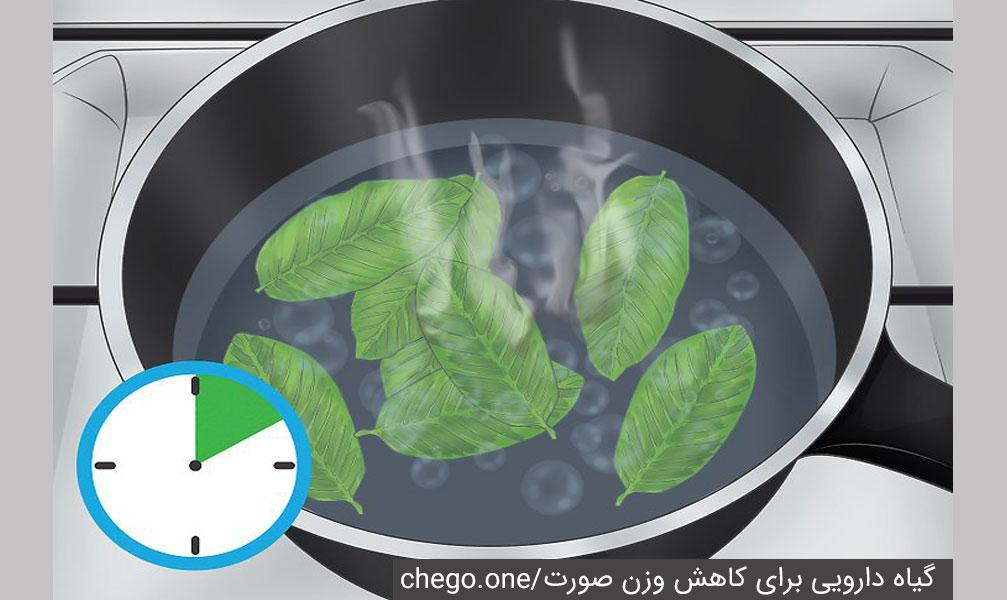 گیاه دارویی کاهش وزن