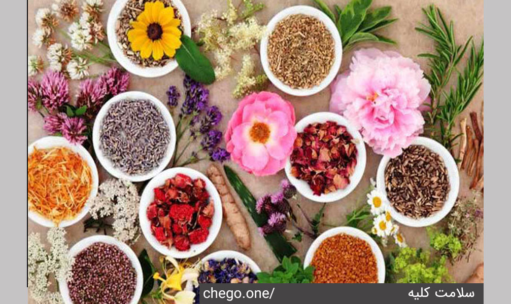 گیاهان دارویی برای درمان کلیه